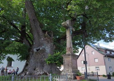 Linde Hochmössingen: Ensemble Baum und markantes Steinkreuz