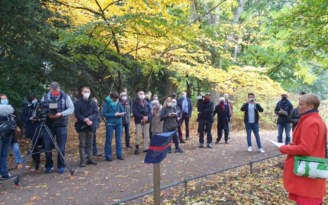 Berg-Ahorn im Hamburger Hirschpark als sechster Nationalerbe-Baum ausgerufen