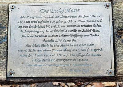 Dicke Marie: Tafel am Baum Dez. 2020
