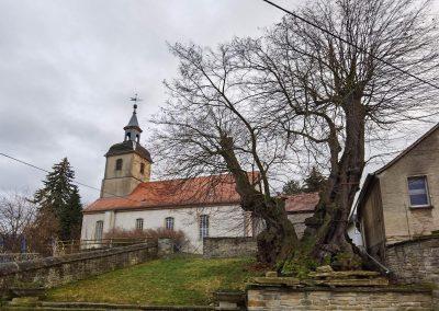 Prangerlinde Großpörthen: Baum vor der Kirche