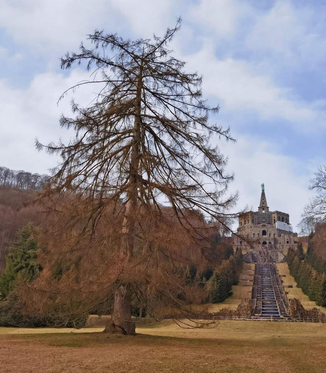 Lärche Kassel: Blick von der Lärche (links) zum Herkules die Wasserkaskaden hinauf